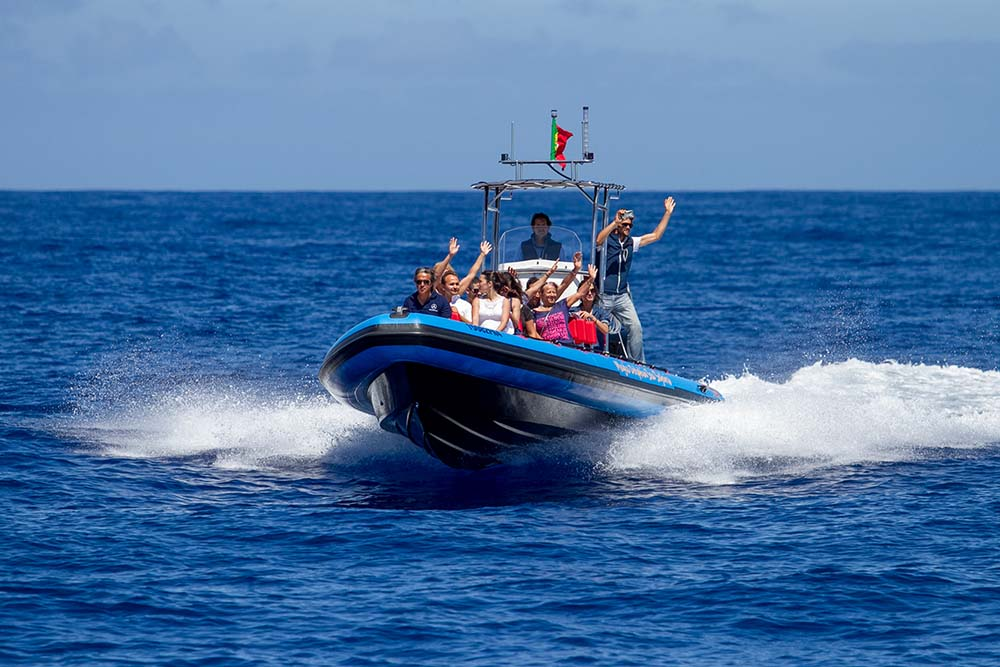 Boat tour in Madeira - Speed Boat - The RIB