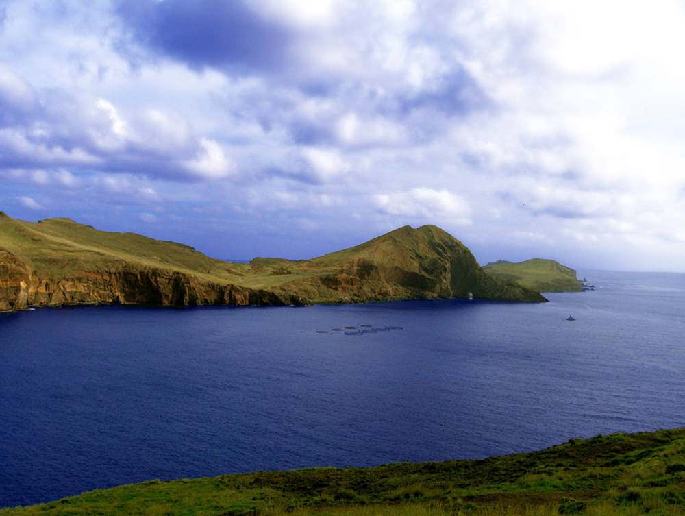 BONITA DA MADEIRA: the bays of Madeira